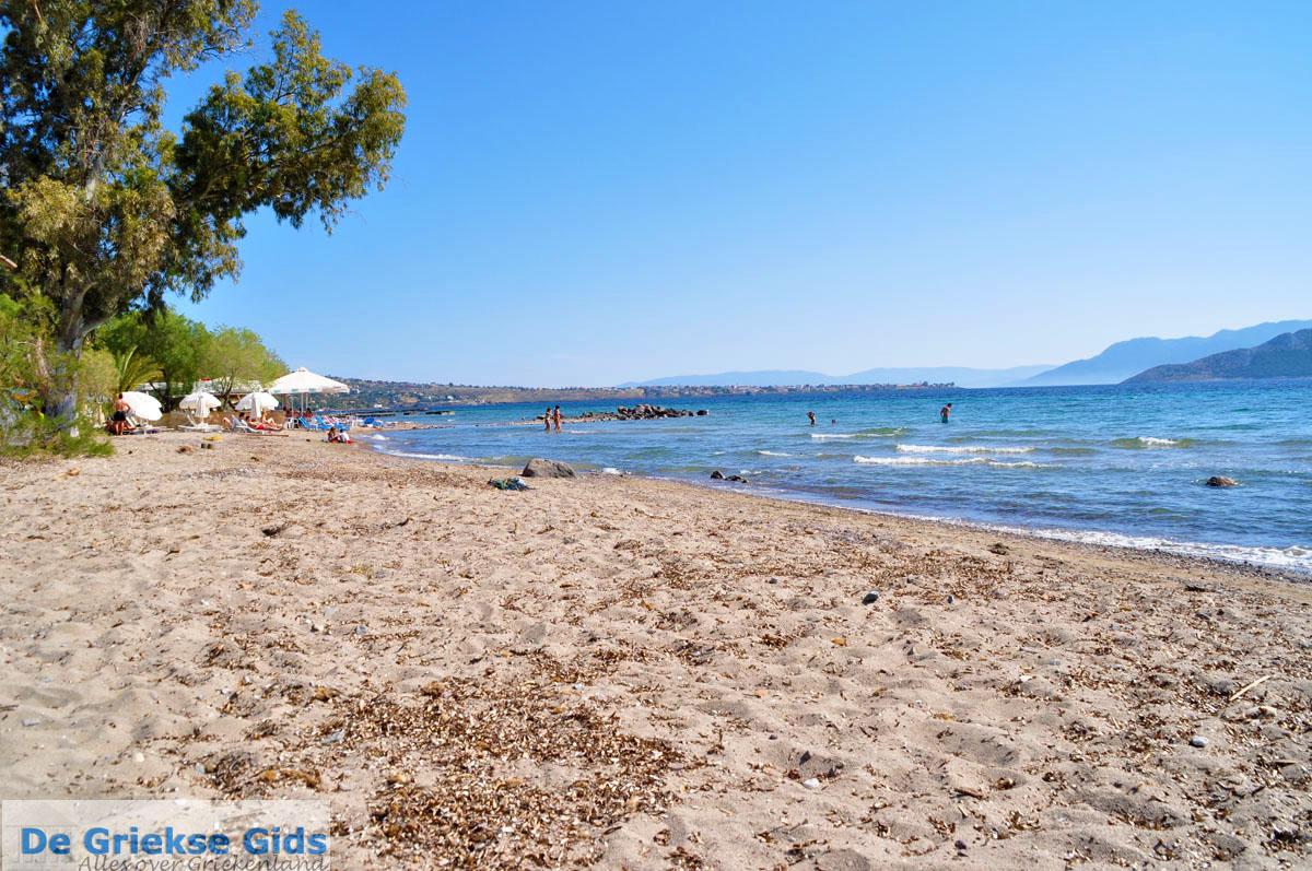 foto Marathonas Aegina   Griekenland   Foto 8