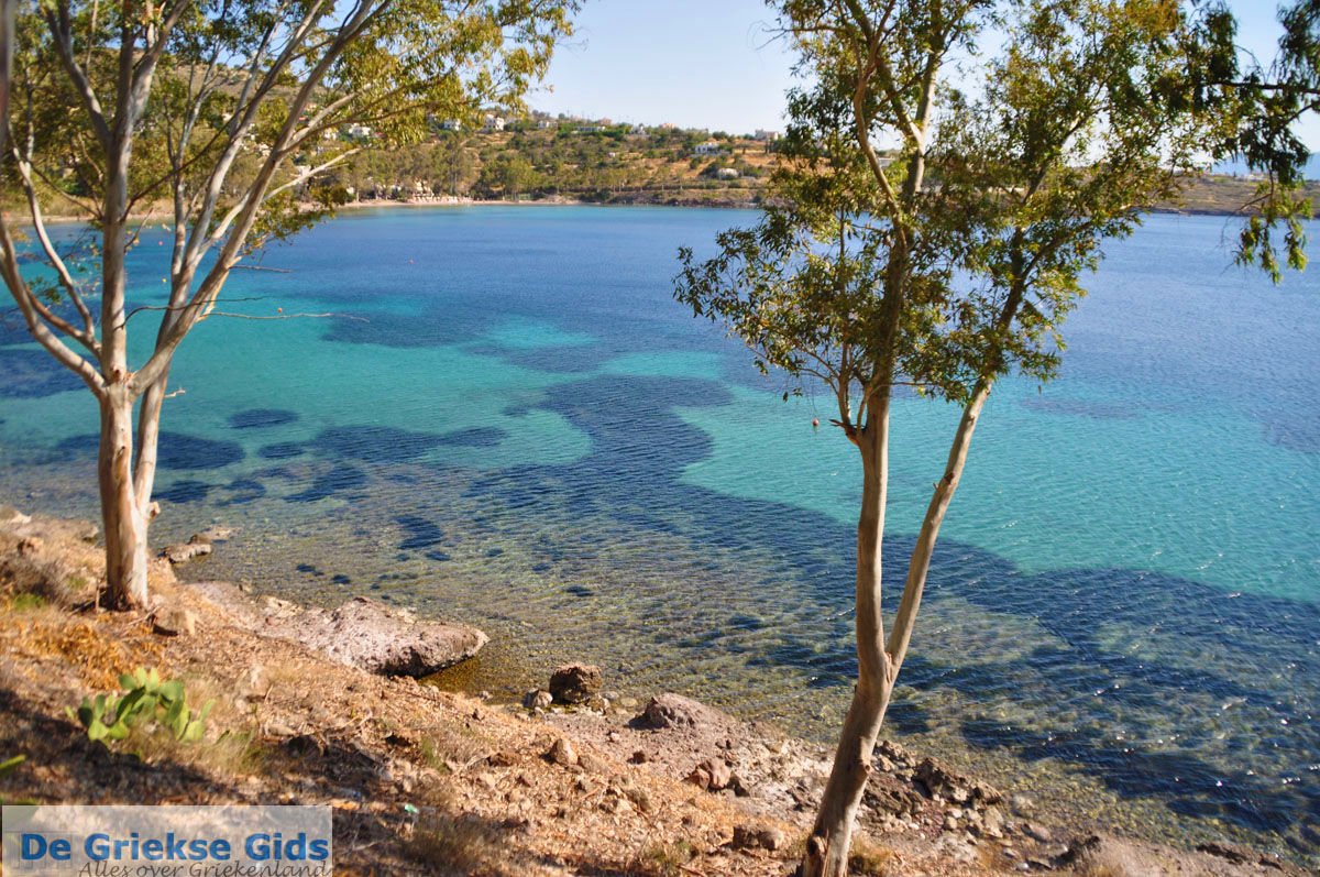 foto Aeginitissa | Aegina | De Griekse Gids foto 5