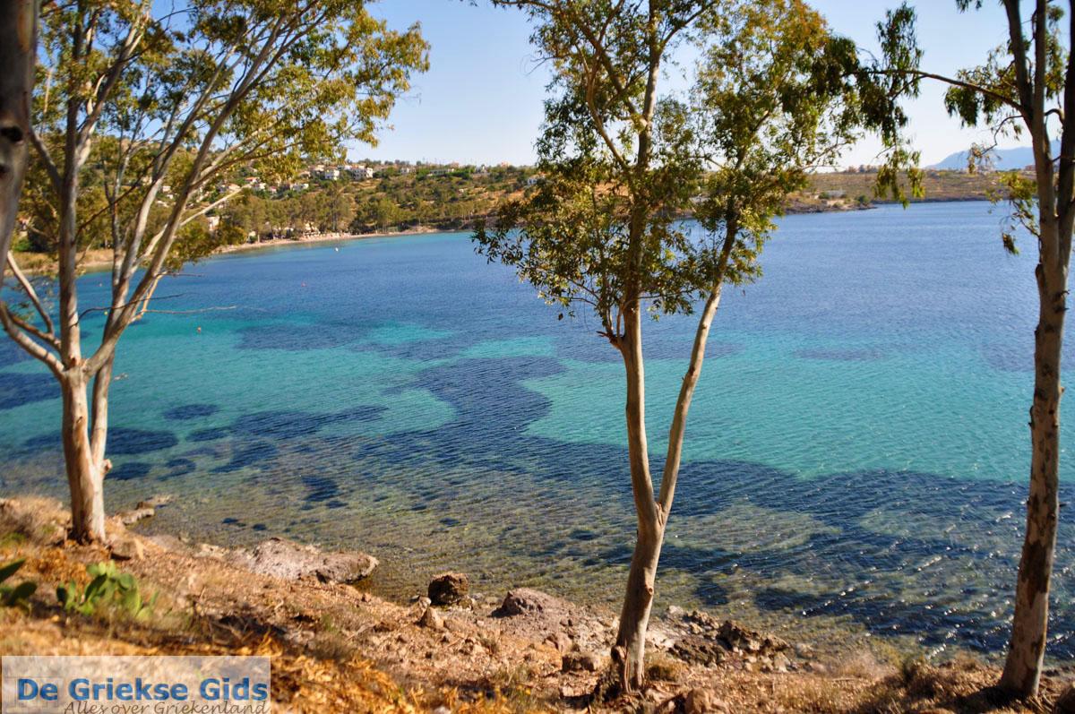 foto Aeginitissa | Aegina | De Griekse Gids foto 8
