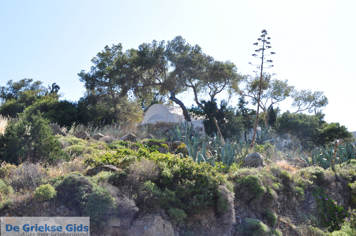 foto Aeginitissa | Aegina | De Griekse Gids foto 26