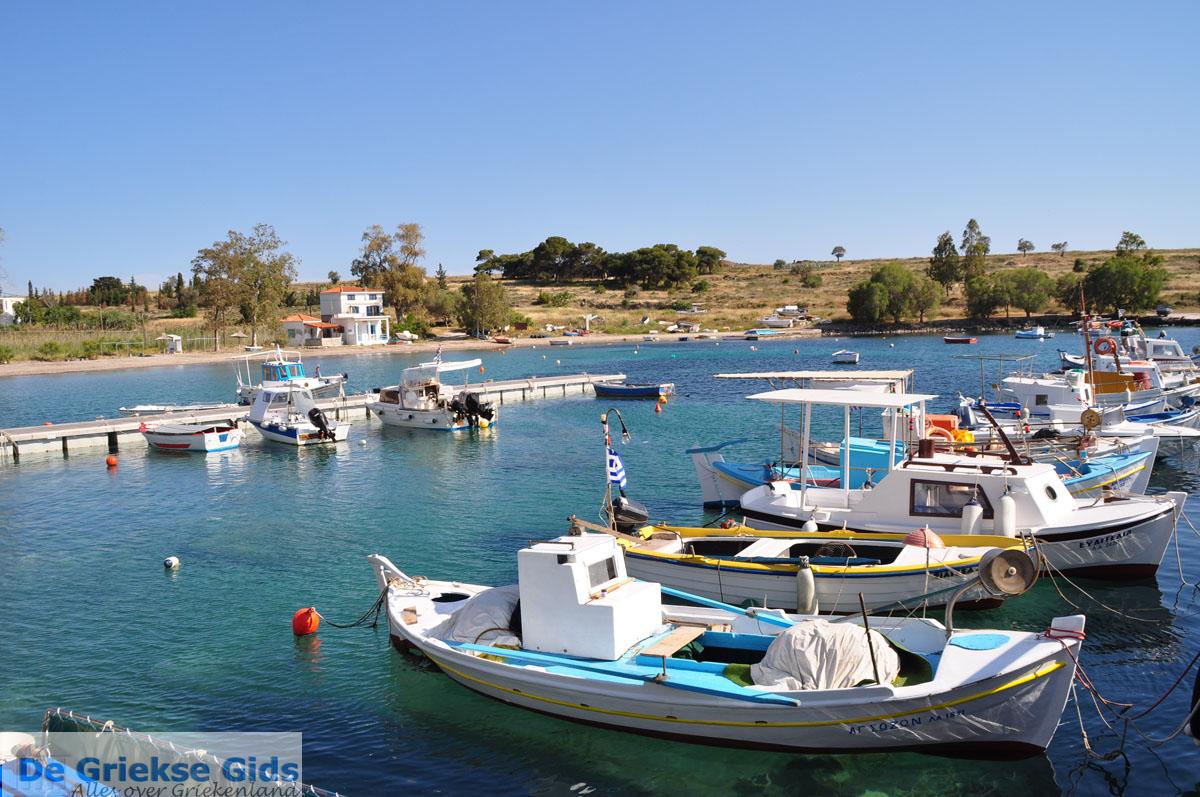 foto Perdika | Aegina | De Griekse Gids foto 1