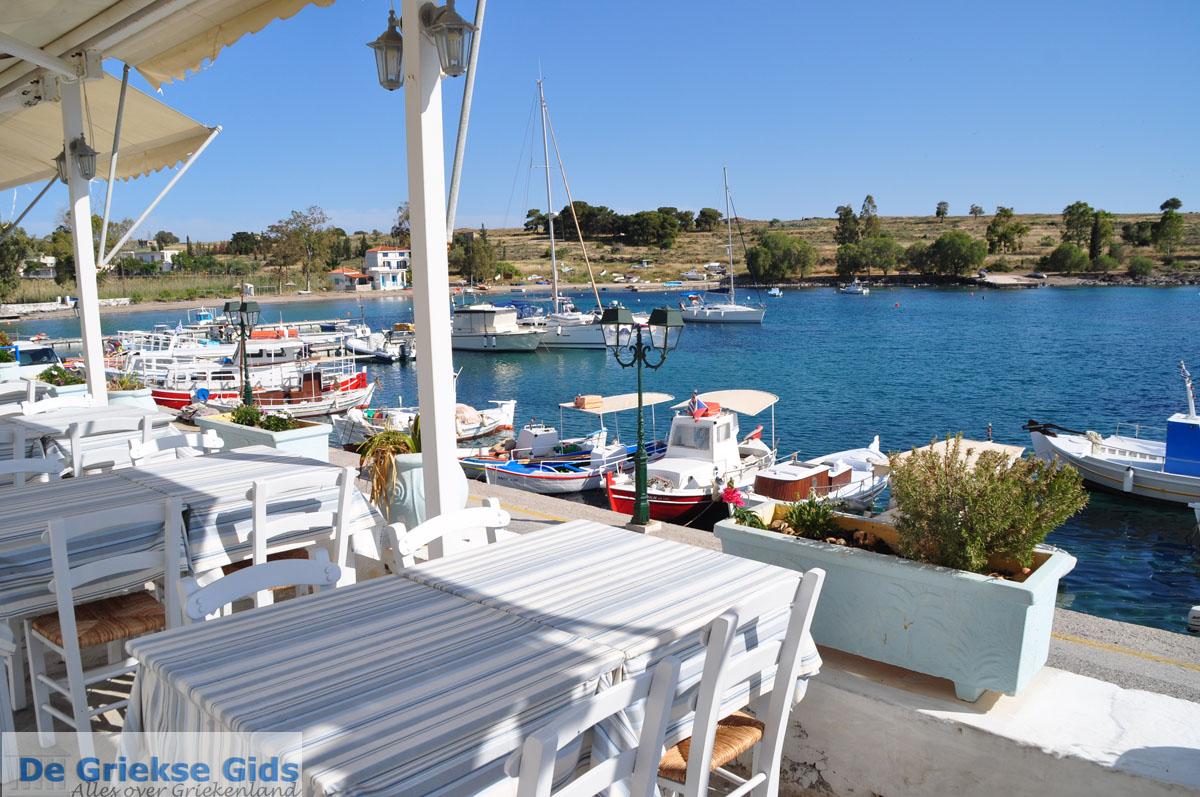 foto Perdika | Aegina | De Griekse Gids foto 15
