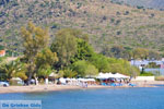 Marathonas Aegina | Griekenland | Foto 1 - Foto van De Griekse Gids