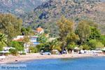 Marathonas Aegina | Griekenland | Foto 2 - Foto van De Griekse Gids