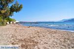 Marathonas Aegina | Griekenland | Foto 8 - Foto van De Griekse Gids