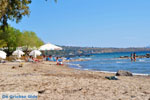 Marathonas Aegina | Griekenland | Foto 9 - Foto van De Griekse Gids