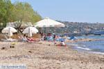 Marathonas Aegina | Griekenland | Foto 10 - Foto van De Griekse Gids