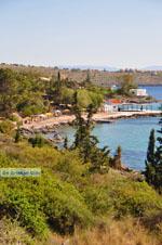 Aeginitissa | Aegina | De Griekse Gids foto 4 - Foto van De Griekse Gids