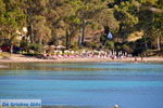 Aeginitissa | Aegina | De Griekse Gids foto 10 - Foto van De Griekse Gids