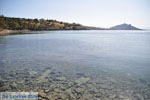 Aeginitissa | Aegina | De Griekse Gids foto 15 - Foto van De Griekse Gids