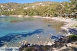 Aeginitissa | Aegina | De Griekse Gids foto 18 - Foto van De Griekse Gids