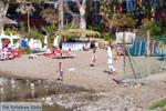 Aeginitissa | Aegina | De Griekse Gids foto 22 - Foto van De Griekse Gids