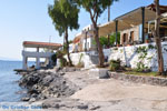 Perdika | Aegina | De Griekse Gids foto 11 - Foto van De Griekse Gids