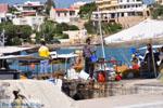 Souvala | Aegina | De Griekse Gids foto 3 - Foto van De Griekse Gids