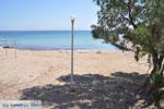 Souvala | Aegina | De Griekse Gids foto 12 - Foto van De Griekse Gids