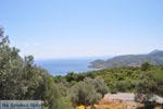 Uitzicht op baai bij Aghia Marina | Aegina | De Griekse Gids - Foto van De Griekse Gids