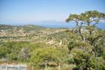 Afaia | Aegina | De Griekse Gids foto 15 - Foto van De Griekse Gids