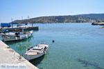 Aghia Marina | Aegina | De Griekse Gids 17 - Foto van De Griekse Gids