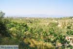 Uitzicht Noordwesten Aegina | Griekenland | De Griekse Gids foto 1 - Foto van De Griekse Gids