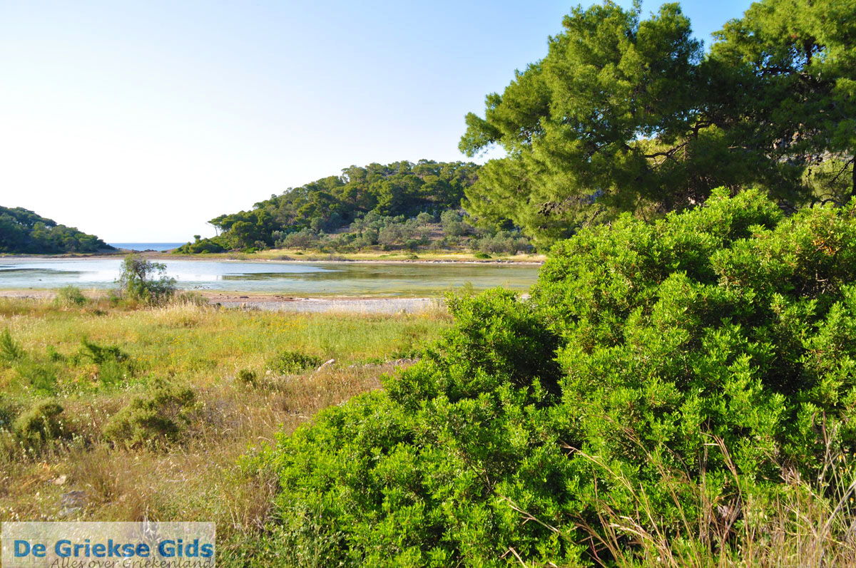 foto Meertje tussen Limenaria en Aponissos | Agkistri Griekenland | Foto 4