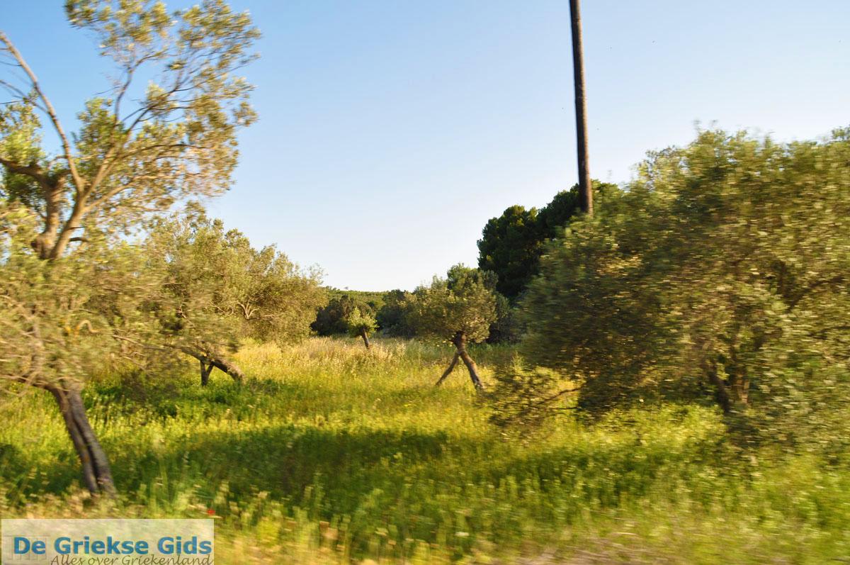 foto Van Aponissos naar Limenaria | Agkistri Griekenland | Foto 1