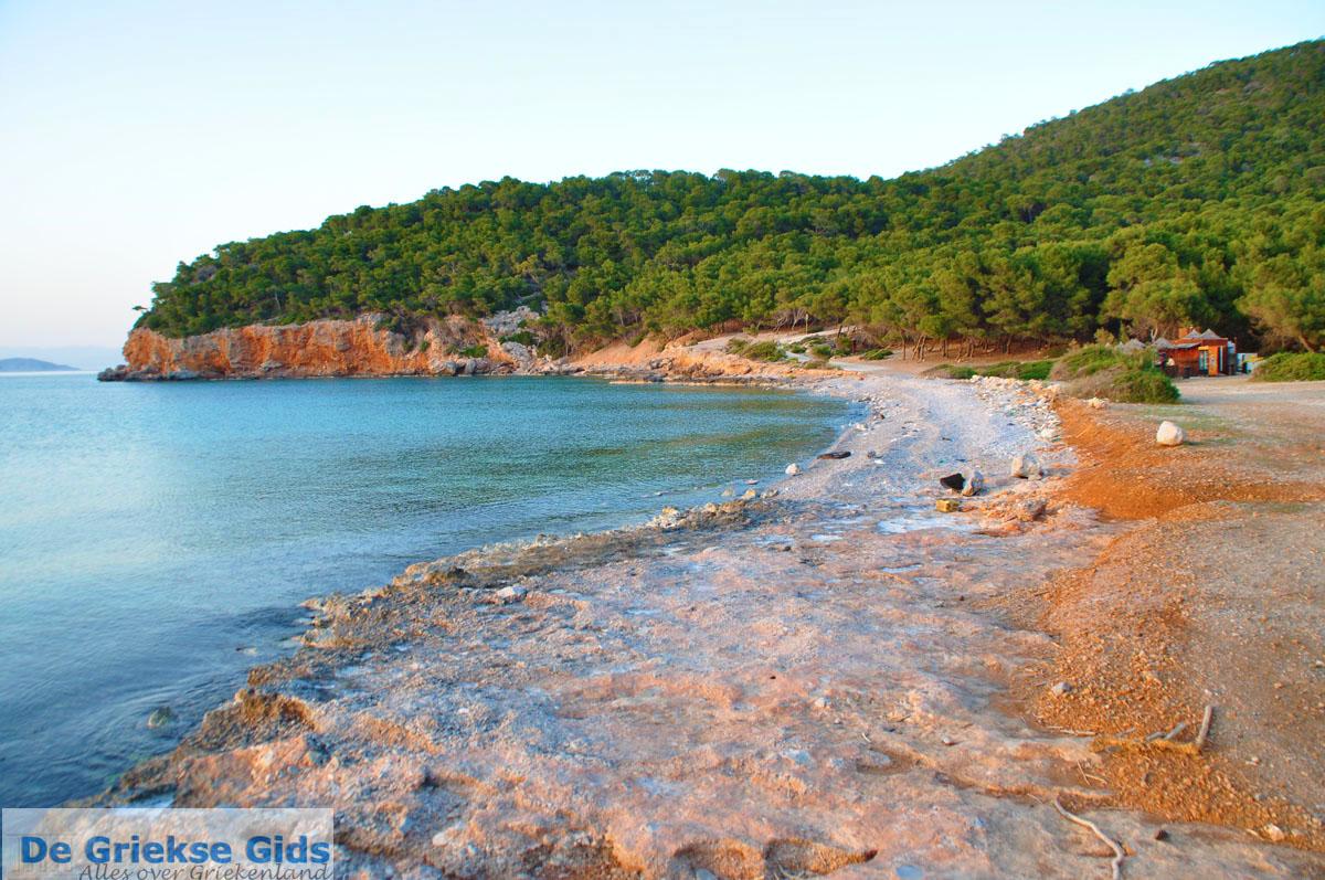 foto Dragonera | Agkistri Griekenland | Foto 2