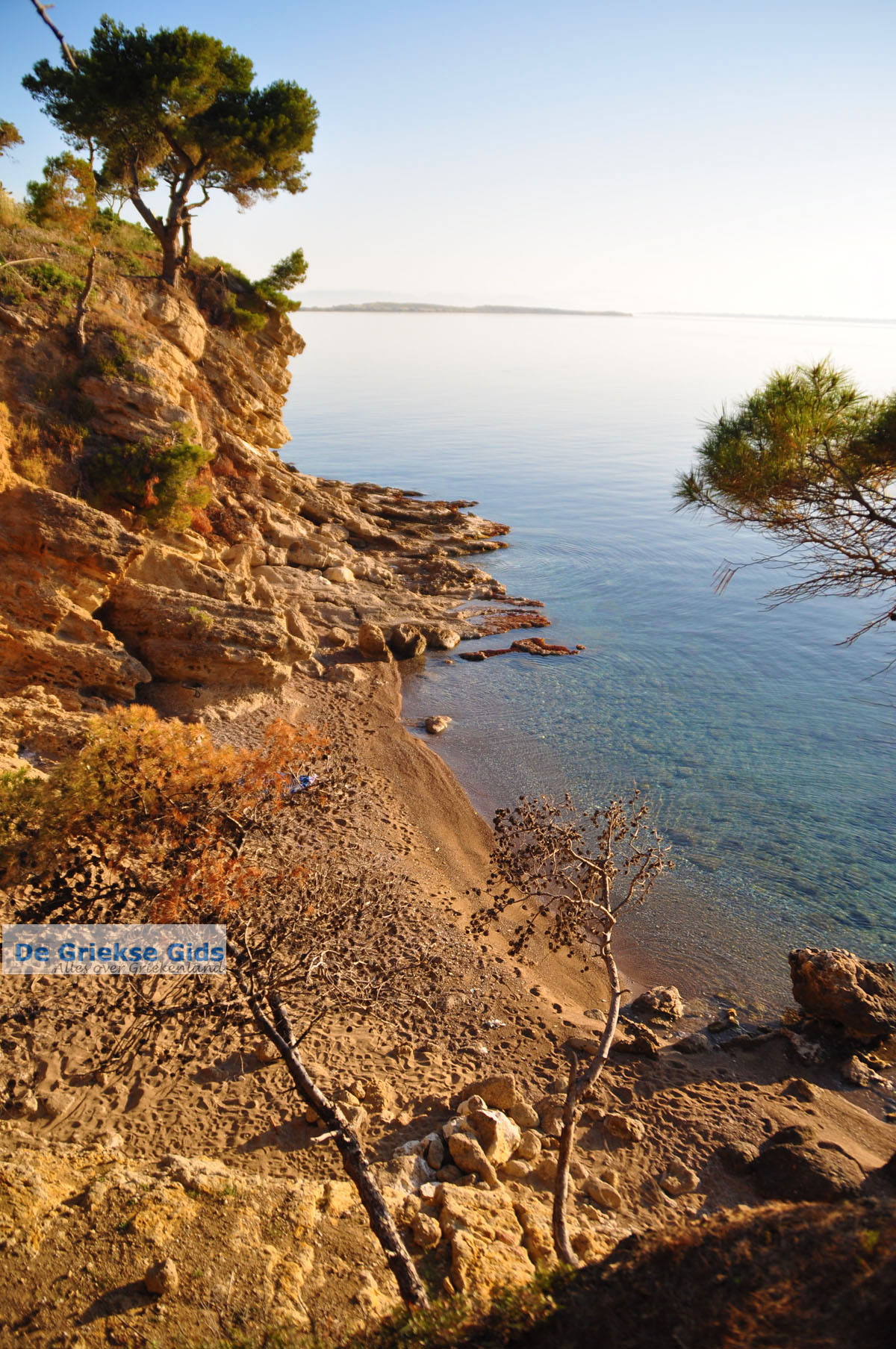 foto Klein zandstrand tussen de dennebomen bij Skala | Agkistri Griekenland | Foto 3