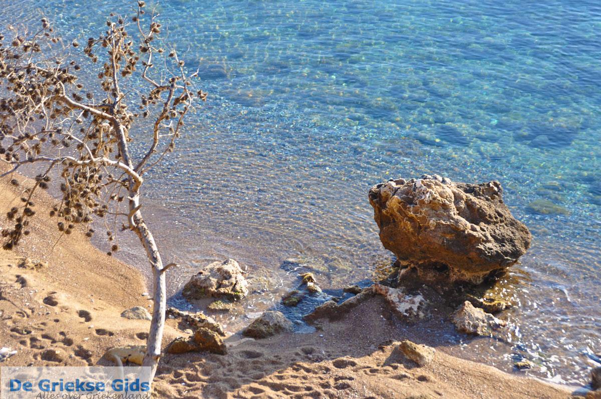 foto Klein zandstrand tussen de dennebomen bij Skala | Agkistri Griekenland | Foto 5