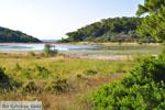 Meertje tussen Limenaria en Aponissos | Agkistri Griekenland | Foto 1 - Foto van De Griekse Gids