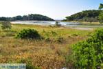 Meertje tussen Limenaria en Aponissos | Agkistri Griekenland | Foto 2 - Foto van De Griekse Gids