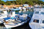 Aponissos | Agkistri Griekenland | Foto 12 - Foto van De Griekse Gids