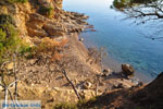 Klein zandstrand tussen de dennebomen bij Skala | Agkistri Griekenland | Foto 2 - Foto van De Griekse Gids