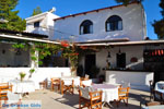 Terras Agistri Club | Agkistri Griekenland | foto 1 - Foto van De Griekse Gids