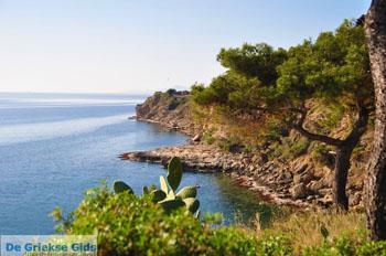 Prachtig Agkistri | Griekenland | De Griekse Gids foto 3 - Foto van De Griekse Gids
