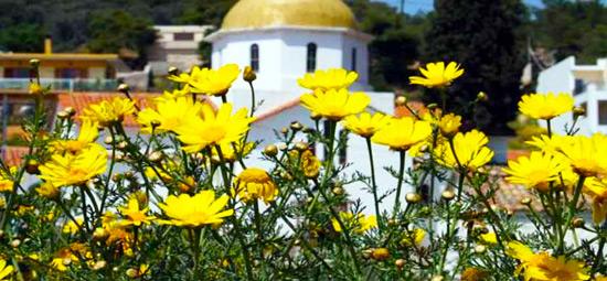 foto Agkistri (Agistri of Angistri) | Saronische eilanden | Foto 10