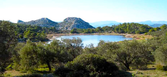 foto Agkistri (Agistri of Angistri) | Saronische eilanden | Foto 9