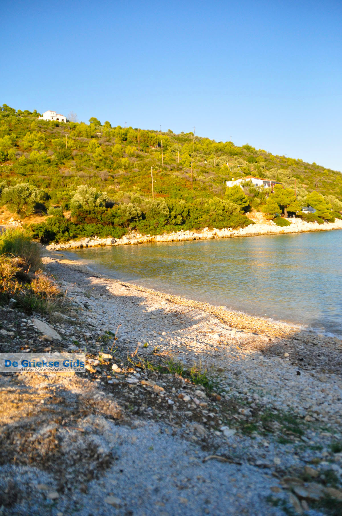 foto Tzortzi | Alonissos Sporaden | De Griekse Gids foto 5