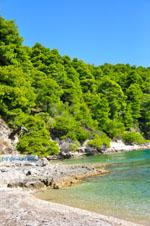 Milia Alonissos | Sporaden | De Griekse Gids foto 2 - Foto van De Griekse Gids