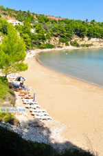 Chrisi Milia | Alonissos Sporaden | De Griekse Gids foto 9 - Foto van De Griekse Gids