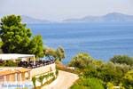 Chrisi Milia | Alonissos Sporaden | De Griekse Gids foto 27 - Foto van De Griekse Gids