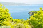 Oostkust Alonissos | Sporaden | De Griekse Gids foto 6 - Foto van De Griekse Gids