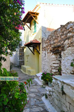 Alonissos stad (Chora) | Sporaden | De Griekse Gids foto 33 - Foto van De Griekse Gids