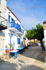 Alonissos stad (Chora) | Sporaden | De Griekse Gids foto 63 - Foto van De Griekse Gids
