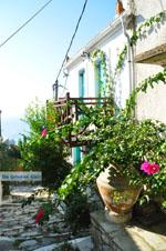Alonissos stad (Chora) | Sporaden | De Griekse Gids foto 81 - Foto van De Griekse Gids