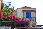Alonissos stad (Chora) | Sporaden | De Griekse Gids foto 89 - Foto van De Griekse Gids