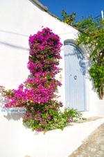 Alonissos stad (Chora) | Sporaden Griekenland foto 90 - Foto van De Griekse Gids