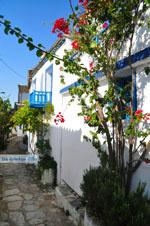 Alonissos stad (Chora) | Sporaden | De Griekse Gids foto 96 - Foto van De Griekse Gids