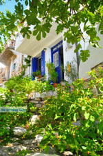 Alonissos stad (Chora) | Sporaden Griekenland foto 98 - Foto van De Griekse Gids