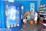 MOM, bescherming Monachus-Monachus zeehonden Alonissos | Sporaden foto 3 - Foto van De Griekse Gids