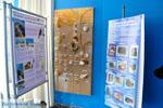 MOM, bescherming Monachus-Monachus zeehonden Alonissos | Sporaden foto 6 - Foto van De Griekse Gids